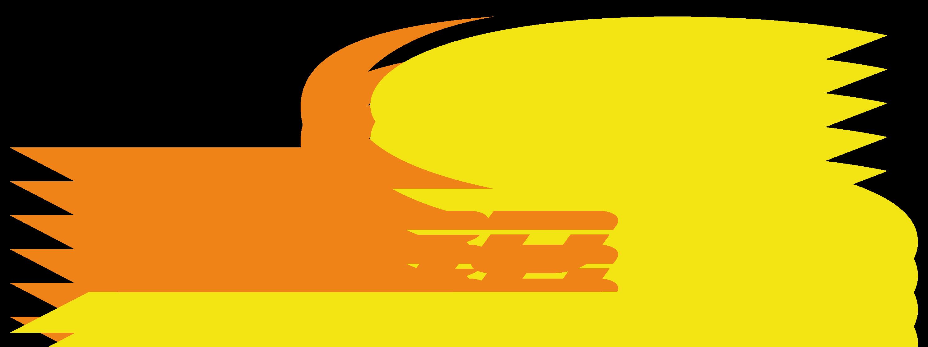 Pro-S